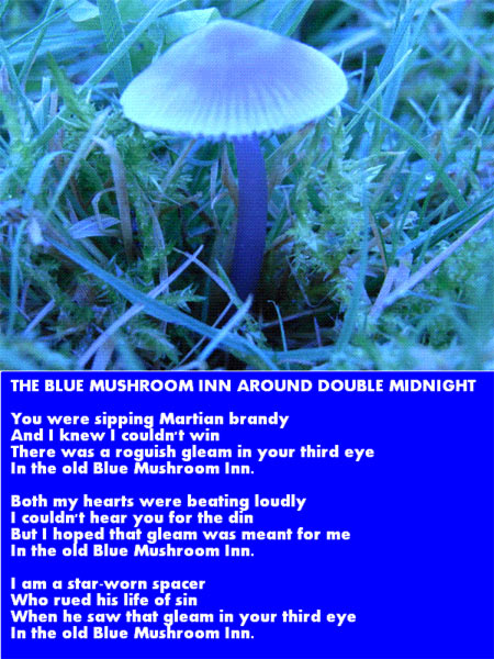 The Blue Mushroom Inn Around Midnight.