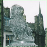 The Edinburgh statue of the loyal dog known as Greyfriars Bobby.