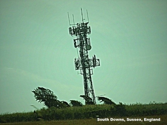 Mast on Downs.