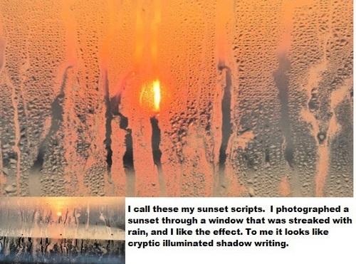 Sunset Script by Cactuscafe.