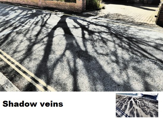 Shadow Veins.