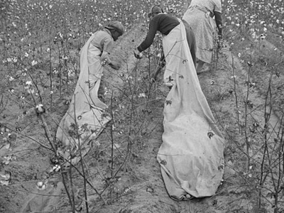 Cotton pickers in Arkansas.