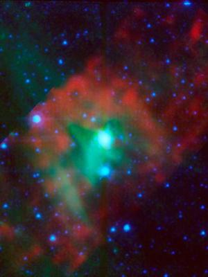 The star delta Cephei