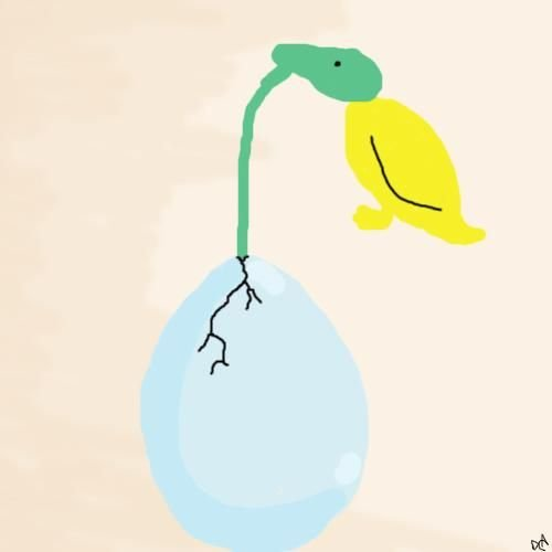 Emerging duck.