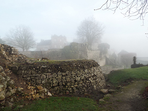 A wall, trees and houses fading into the fog