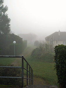 A layered image with railings, a hedge and houses fading into the fog