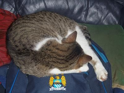 George the City fan.