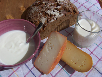 A photo of cheese, yoghurt and sourdough bread, all aided by lactobacillus microbes.