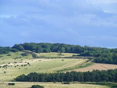 Looking toward Tidpit Boclerley Dyke