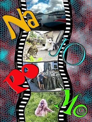 NaJo Challenge 2017