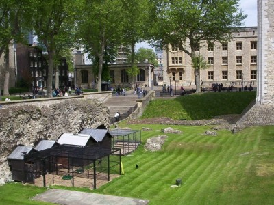 Raven Birdcages at the Tower of London