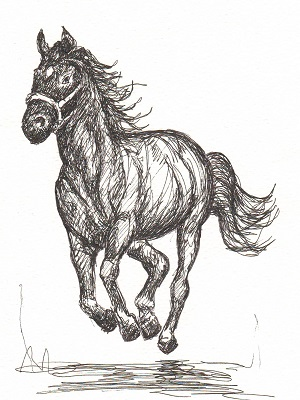 A galloping black horse.