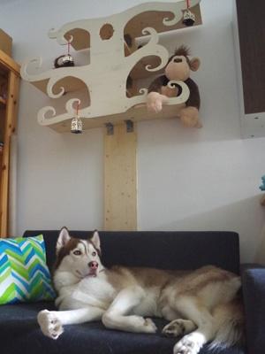 Tree shelf with elegant dog.