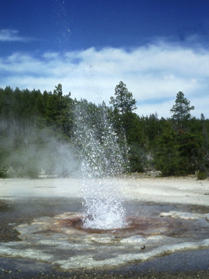 A geyser at Yellowstone National Park