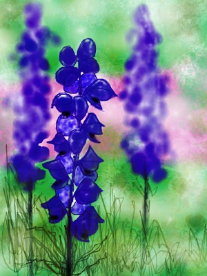 Wolfsbane or aconite - a deadly poison