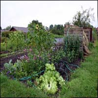 An allotment.