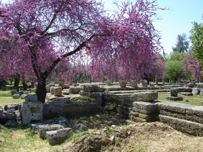 The ruins of Ancient Olympia in Springtime.