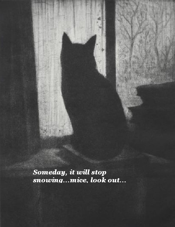 The cat looks out the window and thinks, 'Someday it will stop snowing. Mice, look out.'