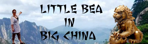 The Little Bea in Big China Banner
