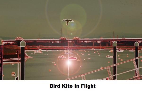 Bird kite in flight.