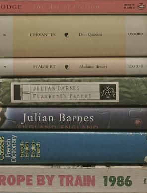 Books to help you understand Flaubert's Parrot