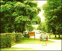 Weald Park in Brentwood, Essex.