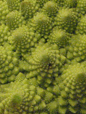 Romanesco Broccoli.