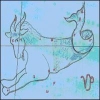 Capricornus 'the Sea Goat'.