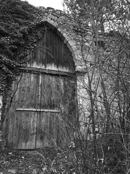 Castle Doors by Tavaron