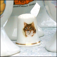 A thimble with a cat's face on it.