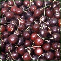 Some cherries.