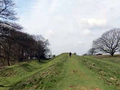 A photograph of Cissbury Ring Hill Fort.
