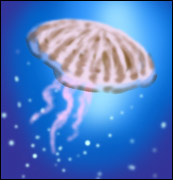 A jellyfish - Graphic by Community Artist Jimster