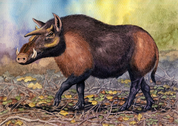 Kubanochoerus by Willem.