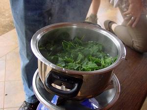 Centella asiatica cooking