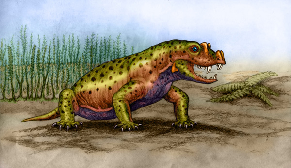 Tetraceratops by Willem