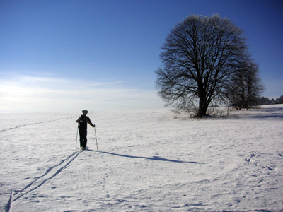Someone cross-country skiing.