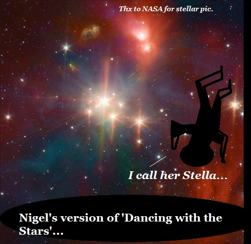 Nigel dances with a real star. Her name is Stella.
