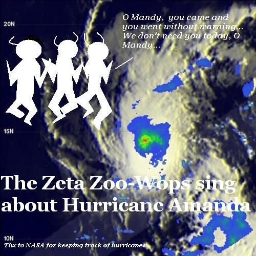 The Zeta Zoowoops sing about Hurricane Amanda.