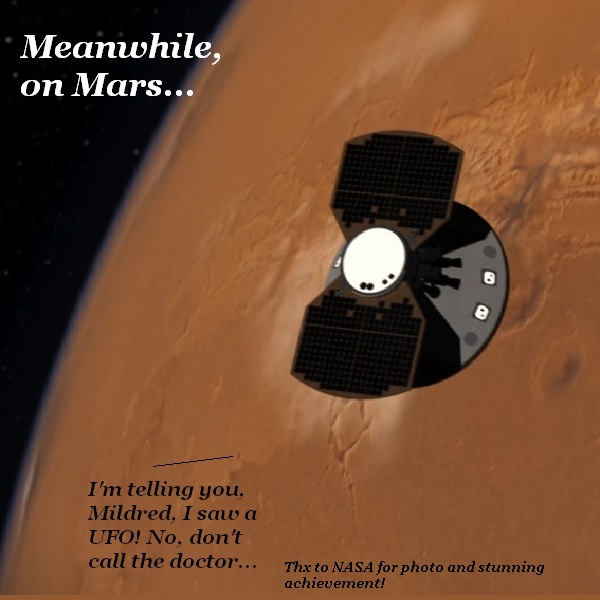 A Martian complains to his wife that he is sure he saw a UFO.