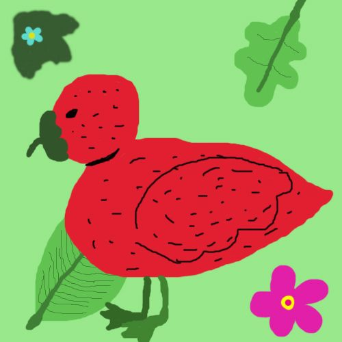Strawberry Duck