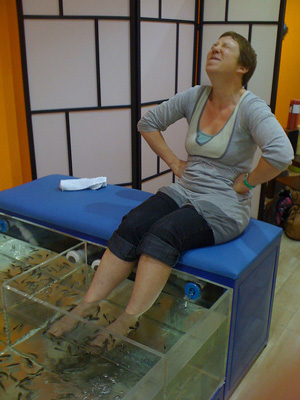 A woman being tickled by fish nibbling at her feet.