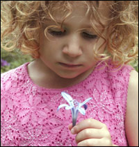 A little girl holds a flower in her hand, as if listening to what it might be saying.