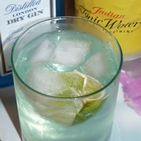 A lovely glass of gin and tonic