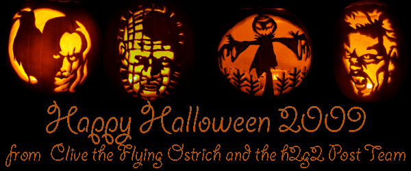 A banner showing some of Clive the Flying Ostrich's fantastic pumpkins