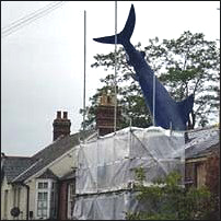 The Headington Shark.