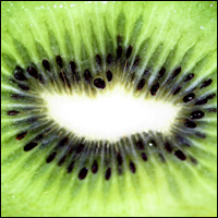 A close-up of a slice of fresh kiwifruit.