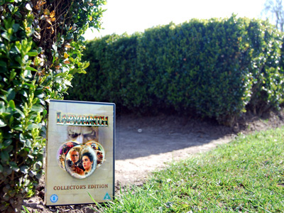A photograph of the DVD of the film against a backdrop of a hedge maze.