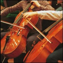 Two cellists in action.