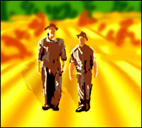 Two men strolling across a yellow cornfield